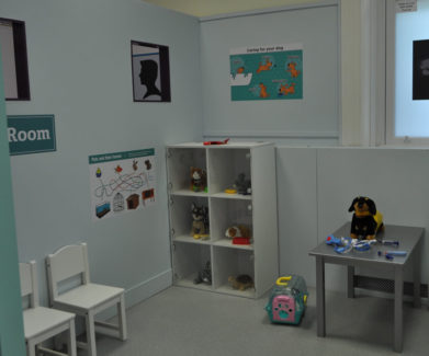 Vet's office, vet play, Little Street, Little Street Play Centre, Play Centre, Children Play Centre, UK play centre, children, childrens entertainment